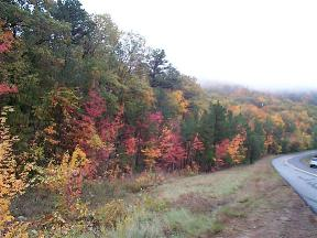autumn foliage on the National talimena scenic by-way